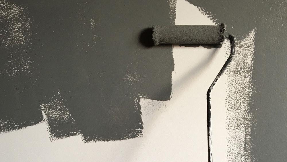 Slikopleskarska dela z barvanjem sten in stropov ter fasaderskimi deli gradbene adaptacije Gavis plus